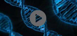 גילוי היתר במחקר גנטי