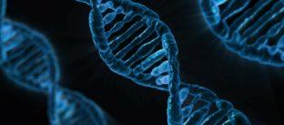 חובת גילוי היתר במחקר גנטי