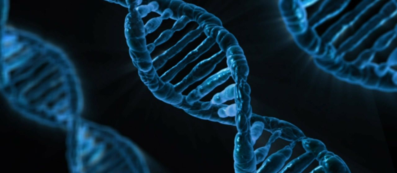 הממצא האקראי במחקר הגנטי