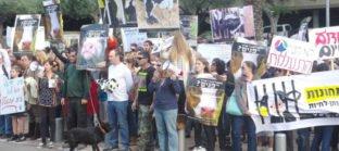 הפגנה שביתת רעב
