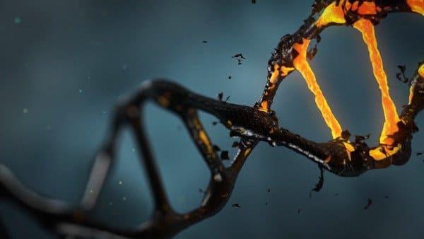 מה דעתך על שיבוט גנטי?