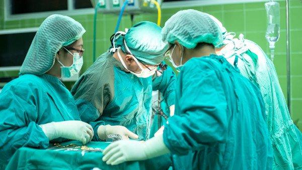 תרומת איברים: אצילות שמתגברת על הכאב