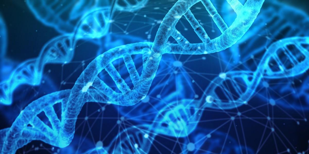 הריצוף הגנטי של הדור הבא (NGS)