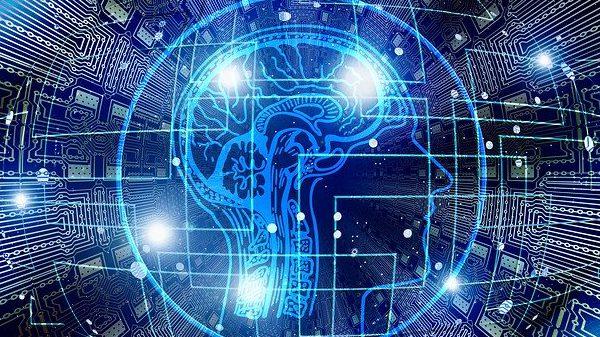 תרומת דגימות מוח לאחר המוות לצורך מחקר בדמנציה