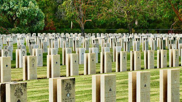 הפריה מזרעו של חייל שנהרג - המשך