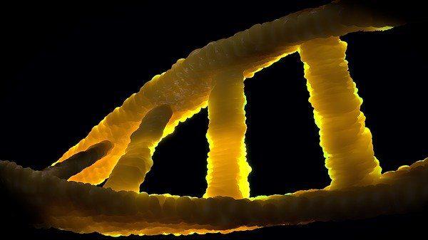האתיקה היהודית של הנדסה גנטית