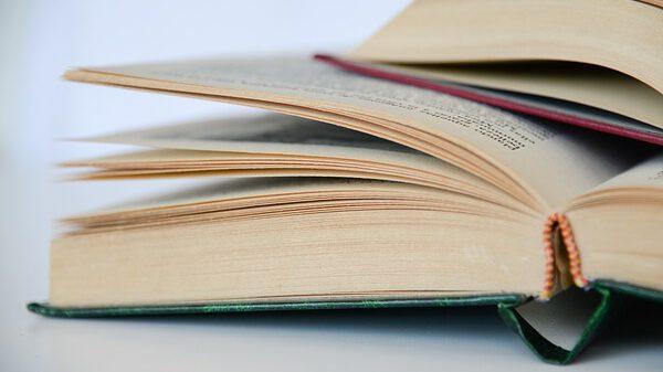 מסגרות חינוך ציבוריות ואליטיסטיות