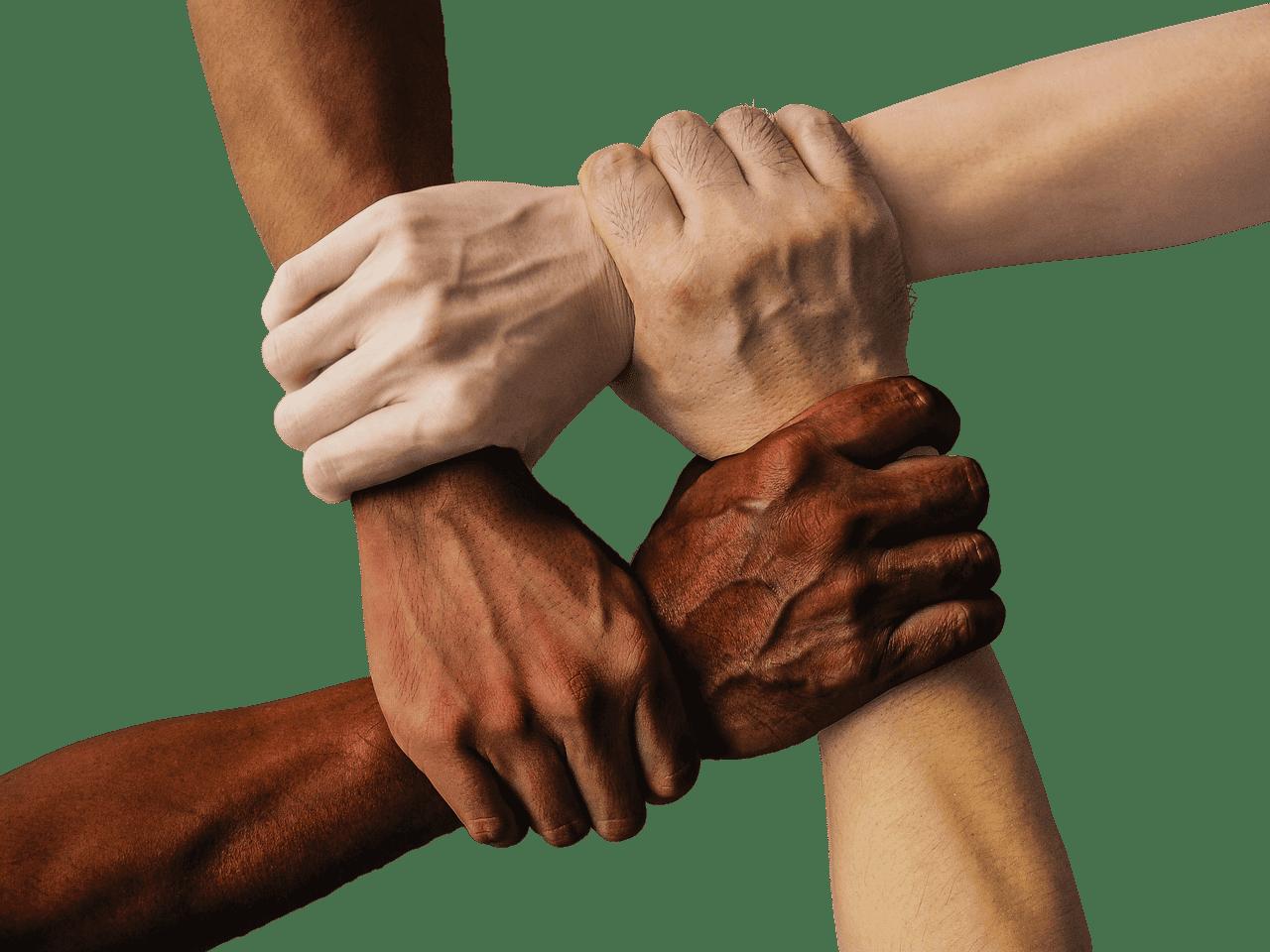 ידיים בצבעי עור שונים אוחזות זו בזו