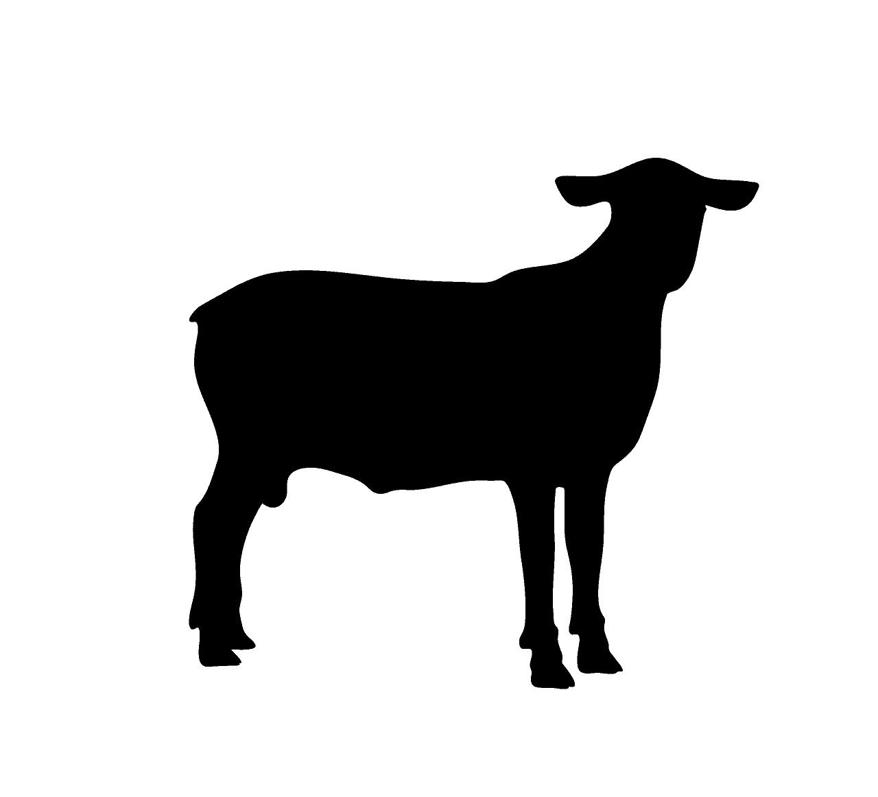 ציור שחור לבן של עז