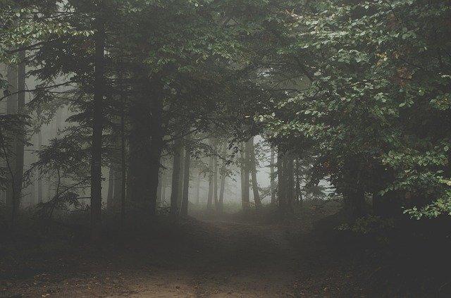 האחריות לקיימות העולם – גם של הדתיים